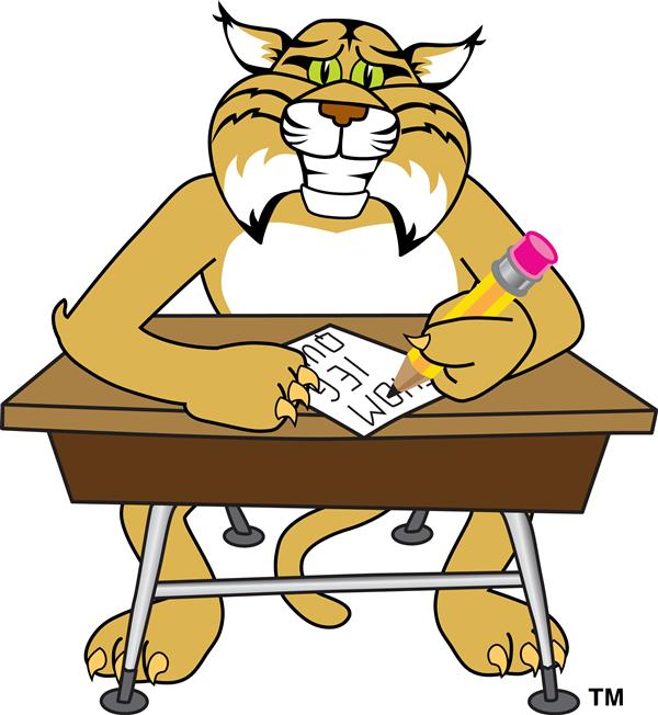 wildcat at a desk