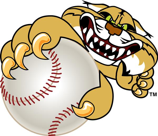 wildcat with a baseball