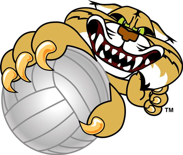 Wildcat holding volleyball