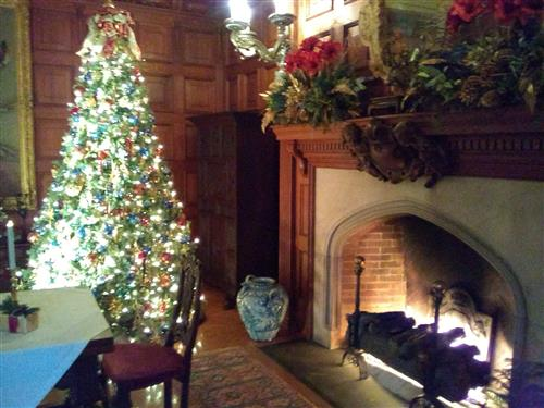 Biltmore House Family Room