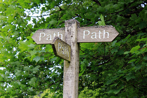 Which path to take?