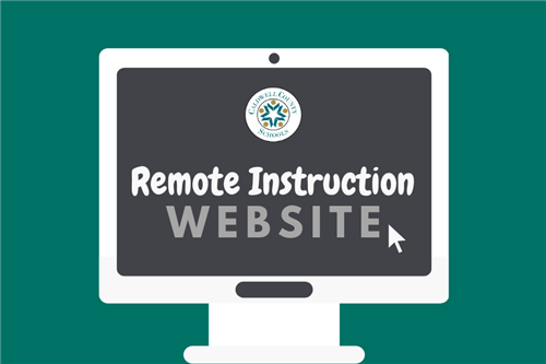Remote Instruction Logo